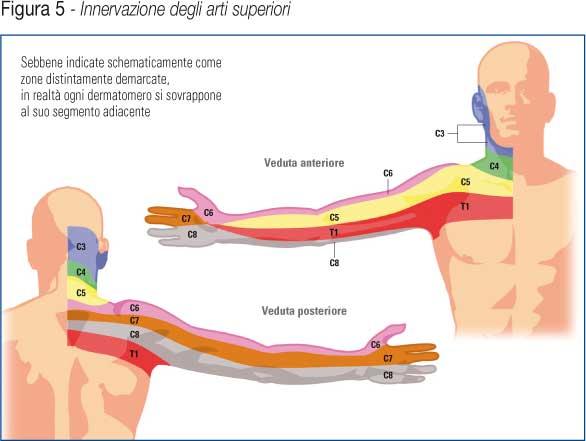 Sport dopo operazione su ernia intervertebrale